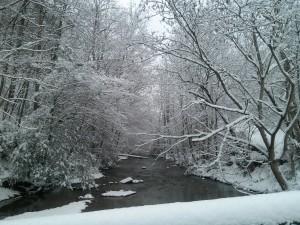 Creek near Campers Bearadise!