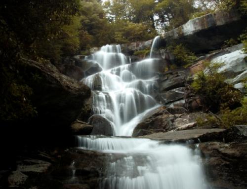 Ramsays Cascades Trail