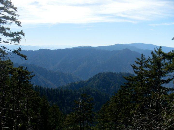 Mont LeConte Lodge