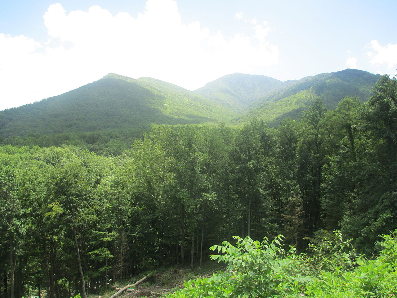 Hiking Trails National Park Smoky Mountain Golden Cabins