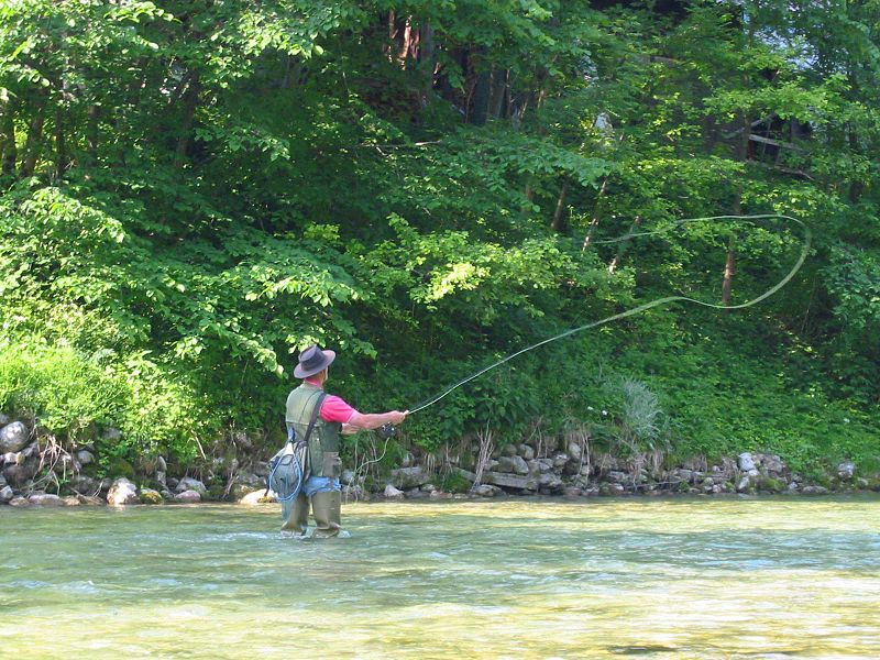 Fly fishing smoky mountains national park smoky for Fishing in gatlinburg tn