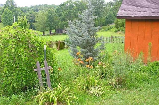 family memories flower garden