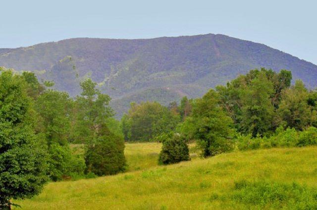golden memories mountain view