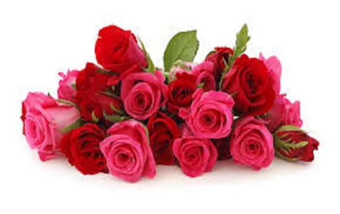 hartmans flowers