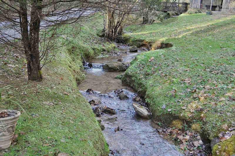 black bear hollow creek